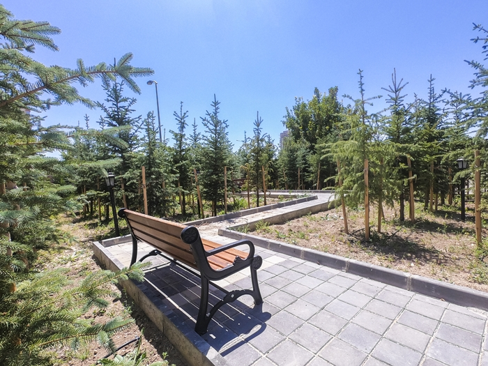 Park Aluna